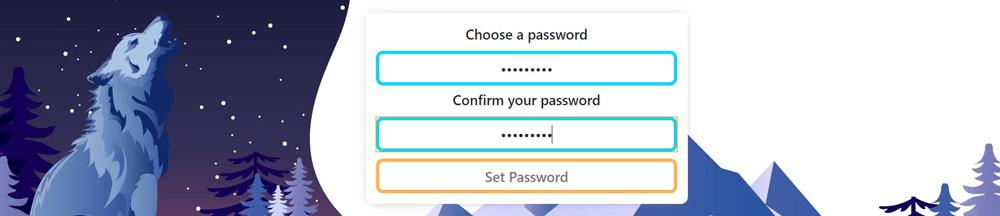 Safex Wallet Choose Password